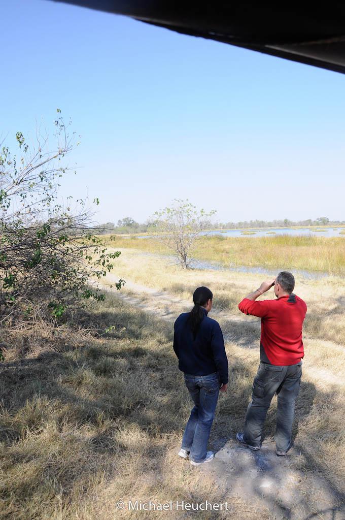 On safari in Okavango
