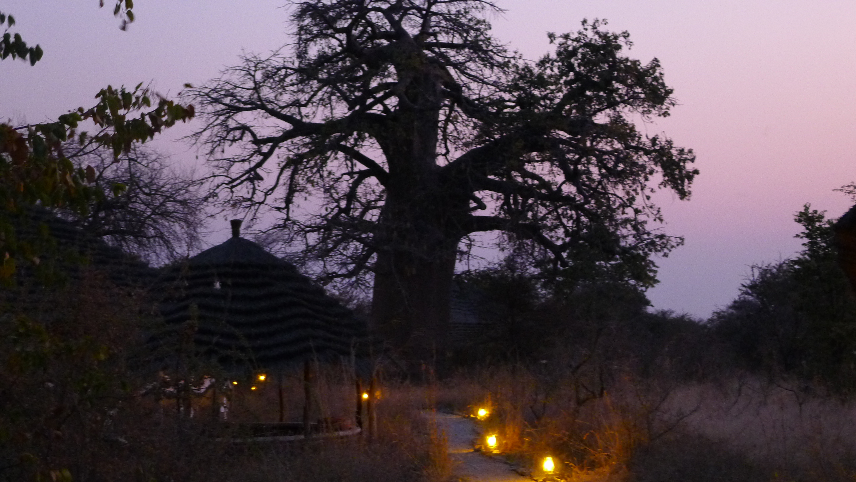 Some of the campsite we stayed at in Botswana were beautiful. There were often chalets to rent, but we always camped. It is at this campsite we were visited by a leopard in the night