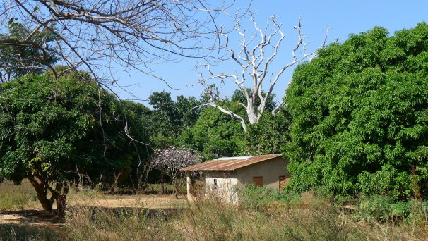 A typical hut in Malawi