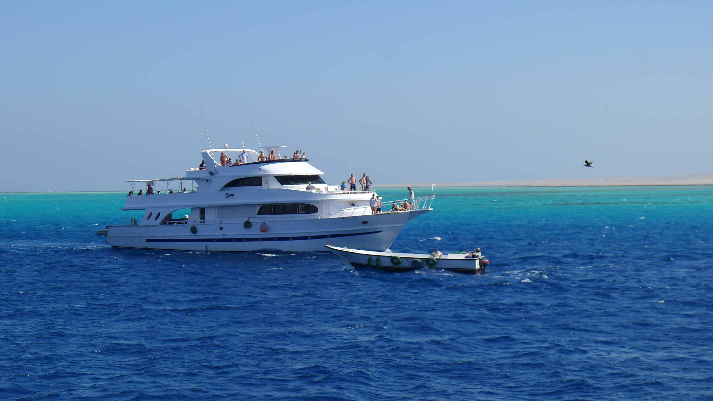 Very reasonably priced days out on a boat to go snorkeling in beautiful seas