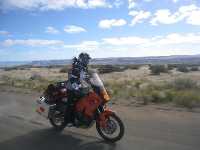 Fanny in full flight in the Namib Desert