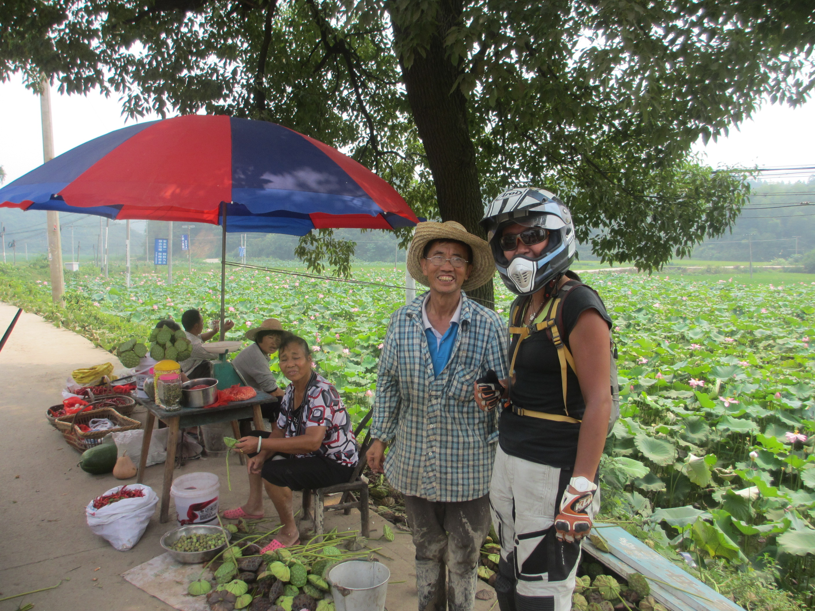 Chatting with locals selling lianzi (lotus seeds) next to huge fields of lianhua (lotus)
