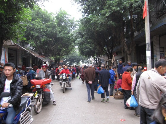 One of many small and crowded towns we rode through in Chongqing