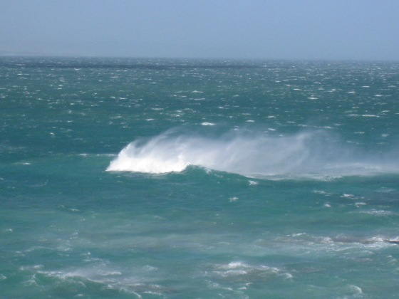 Windy day in Arniston