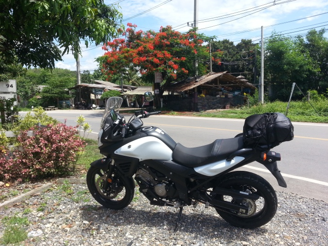On the road .. Suzuki V-Strom 650